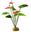 ExoTerra Anthurium Bush